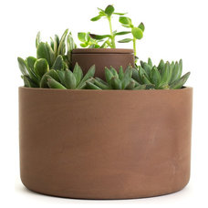 Contemporary Indoor Pots And Planters by Old Faithful Shop