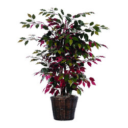 Vickerman - 4' Capensia Bush - 4' Capensia Bush in Decorative Rattan Basket