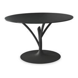 Calligaris - Calligaris | Acacia 120 Dining Table - Quick Ship - Design by Ziliani Marcello.