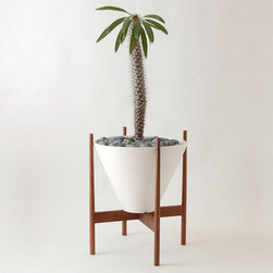Walnut Wooden Stand - I love everything about this planter: the shape, the colors and the wood and white combination, of course. This would go perfectly in my family room next to the TV, and it would add a fun pop of green and texture.
