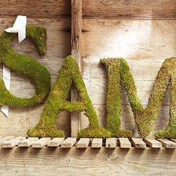 """Live Moss Letter, Y - Wrapped in real moss, our decorative letters bring lively style to spring decorating. Heights range from 18-20"""" high Wood laminate base letter is covered with moss; moss color will not fade. Letters A-Z are each backed with an ivory ribbon for hanging. Choose multiple letters to spell out a word or name."""