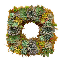 Flora Pacifica - Square Rosea Wreath - This mixed succulent wreath features the Echeveria Rosea.  The wreath is made up of over 30 succulents, including Echeveria Pulldonis, Elegans and Blue.  It also has Sedums Nausbaumeranium, Jelly Bean and Aurora Blue.  With accents of Graptopetlum Superbum.