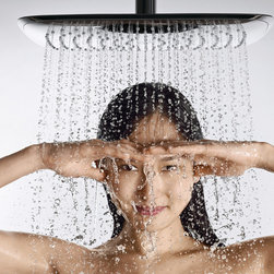 Bathroom Fixtures - Hansgrohe