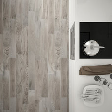 Contemporary Floor Tiles by Standard Tile