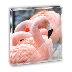 """Made on Terra - Proud Pink Flamingo Mini Desk Plaque and Paperweight - You glance over at your miniature acrylic plaque and your spirits are instantly lifted. It's just too cute! From it's petite size to the unique design, it's the perfect punctuation for your shelf or desk, depending on where you want to place it at that moment. At this moment, it's standing up on its own, but you know it also looks great flat on a desk as a paper weight. Choose from Made on Terra's many wonderful acrylic decorations. Measures approximately 4"""" width x 4"""" in length x 1/2"""" in depth. Made of acrylic. Artwork is printed on the back for a cool effect. Self-standing."""