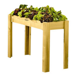 Gardener's Supply Company - Standing Salad Garden - Easily Grow Fresh Salad Greens Right on Your Deck - Also Great for Wheel Chair Gardening
