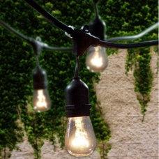 Contemporary Holiday Lighting by Build.com