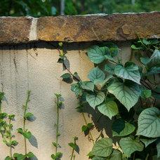 by Plusen Landscape Architects