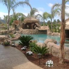 Tropical Hot Tub And Pool Supplies Pool
