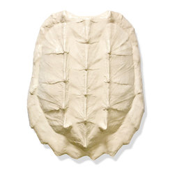 Kathy Kuo Home - Duxbury Coastal Solid Ivory Gator Turtle Shell - by Karen Robertson - The origin of this species is based in the artist's studio. This handsome replica of an ivory gator shell is perfectly detailed and has evolved into a remarkably abstract, and organic design addition to your wall.