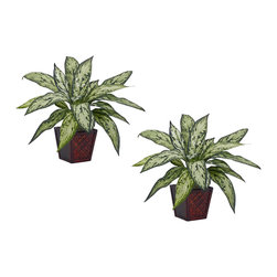 Nearly Natural - Silver Queen Silk Plant (Set of 2) - Why get one Silver Queen when you can get two? This two piece set comes with two artificial Silver Queen plants that look so real, you�ll want to replant them in the backyard. But no, they're meant to stay in their decorative pots and instead compliment your decor. Perfect for an office or living area, this set will ensure that the outdoors is never far away.
