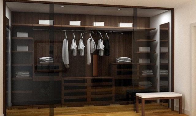 Modern  Modern Closet Organizers