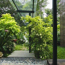 Tropical  covered walkway