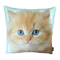 Lava - Persian Cat 18X18 Decorative Pillow (Indoor/Outdoor) - 100% polyester cover and fill.  Suitable for use indoors or out.  Made in USA.  Spot Clean only