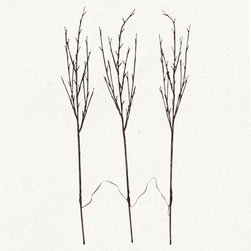 Willow Branch Lights - I had to look twice but these are indeed lights. While I'm sure they look great in holiday decorations, I can really see them in floral arrangements or cleverly grouped in an outdoor setting to light up corners and add accents.