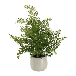 "D&W Silks - Artificial Wire Fern in White Ceramic Planter - It's amazing how much adding a plant can change the look of a room or decor, but it can be difficult if your space is not conducive to growing plants, or if you weren't exactly born with a ""green thumb."" Invite the beauty of nature into your home without all the upkeep with this maintenance-free, allergy-free arrangement of artificial wire fern in a white ceramic planter. This is not a living plant."