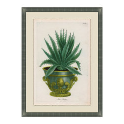 Small Planters - E Framed Giclee - A classic botanical print with antique pot lends an elegant touch to any entry way or living area. For those who love nature but need less maintenance. Adorn your walls with this luscious and exquisitely detailed and framed piece of art, uniquely beautiful and colored in hues of deep greens and gold's. Choose from six and collect your favorites from the collection.