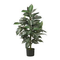 Nearly Natural - 3' Zebra Silk Plant - Warm tropical nights will fill your thoughts as you sit and gaze at this lovely Brazilian beauty. Just over 3 feet tall, this gorgeous Zebra plant is sure to turn heads. Large deep green leaves embellished with a white pin striped design make the Zebra plant an ornamental masterpiece. All natural looking stems immersed in a plastic planter add to its authentic charm. Display it proudly next to your desk or in a sunroom setting.