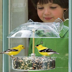 "Droll Yankees - Winner Window Bird Feeder - Droll Yankees Winner Window Feeder. 6"" dish with cover and brass rod for seed suet mealworms or fruit. Colorful box. Attaches with suction cup bar. A DY Classic. Cover is adjustable to keep out large birds."