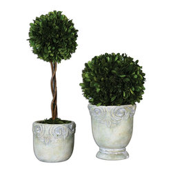 Uttermost - Uttermost Preserved Boxwood Ball Topiaries Set of 2 60112 - Preserved, natural boxwood foliage potted in stone finished, ceramic planters. Tall topiary has natural willow branches.