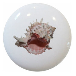Carolina Hardware and Decor, LLC - Murex Seashell Ceramic Cabinet Drawer Knob - New 1 1/2 inch ceramic cabinet, drawer, or furniture knob with mounting hardware included. Also works great in a bathroom or on bi-fold closet doors (may require longer screws). Item can be wiped clean with a soft damp cloth. Great addition and nice finishing touch to any room!