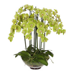 Winward Designs - Phalaenopsis Orchid In Glass Flower Arrangement - Love orchids but hate their high-maintenance ways? Treat yourself to an elegant permanent version that keeps its showy blooms all year long. You'll never have to worry about watering, feeding or babying this beautiful and lifelike display.