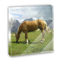 "Made on Terra - Grazing Haflinger Horse Mini Desk Plaque and Paperweight - You glance over at your miniature acrylic plaque and your spirits are instantly lifted. It's just too cute! From it's petite size to the unique design, it's the perfect punctuation for your shelf or desk, depending on where you want to place it at that moment. At this moment, it's standing up on its own, but you know it also looks great flat on a desk as a paper weight. Choose from Made on Terra's many wonderful acrylic decorations. Measures approximately 4"" width x 4"" in length x 1/2"" in depth. Made of acrylic. Artwork is printed on the back for a cool effect. Self-standing."
