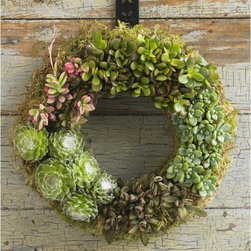 Succulent Wreath - Succulents are a beautiful way to incorporate fresh, long-lasting greenery into your holiday decor. I love the mix and layers of green in this wreath.