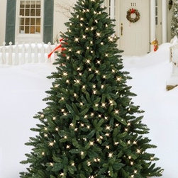 Balsam Hill Allegheny Evergreen Outdoor Artificial Christmas Tree - THE MAGNIFICENCE OF BALSAM HILL'S ALLEGHENY OUTDOOR CHRISTMAS TREE |