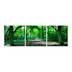Path through the Woods Print