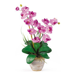 Nearly Natural - Double Phalaenopsis Silk Orchid Flower Arrangement - This 25 inch double stem phalaenopsis silk orchid plant is nothing short of an explosion of color. Expertly arranged, this piece was designed to enhance any space. Each plant comes stacked with two amazing phalaenopsis stems each with 6 flowers and 2 buds. Finished with a gorgeous glazed ceramic vase this item is not to be missed. So whether you're looking for a gift or just want to perfect your decor...you're only one click away.