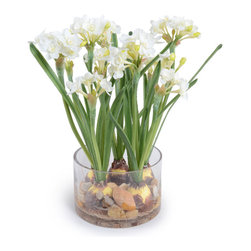 New Growth Designs - Paperwhite Narcissus Arrangement - Self–rising flower. These paperwhite narcissus need no water, sun or soil to attain the perfect blooming stage of their growth. That's because this arrangement is an artistic reproduction, giving you the ability to enjoy this iconic spring flower season after season.