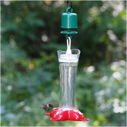 Deluxe Rose Petal Hummingbird Feeder - Draw the hummingbirds right up to your backdoor with the Deluxe Rose Petal Feeder. A clear hardened glass container is durable and lets you see when it's time to refill but with a 12 ounce capacity it won't be too often. There are four feeding ports around the red plastic base so there's plenty of room for a crowd. This feeder features built-in perches for the birds to relax and a built-in ant moat to keep pests out.It is recommended that you clean this feeder twice a week. If extra cleaning is required a solution of vinegar and water should be used. Do not use extremely hot water or place the feeder in your dishwasher.The use of saccharin or other artificial sweeteners is not recommended with this feeder as these have no nutritional value for the birds. Do not use honey or other related products as these can be harmful to hummingbirds.About WoodstreamA privately-held company with a long-standing positive reputation Woodstream is a global manufacturer and marketer of quality products from pets and wildlife control and home and garden products to bird feeders and garden décor. They have a 150 year history of excellence growth and innovation and have built a strong presence in key markets through organic growth and strategic acquisitions. The growth of Woodstream is thanks to their customer-driven approach to product development a dedicated design organization that focuses on innovation quality and safety as well as a commitment to an industry-leading level of service.