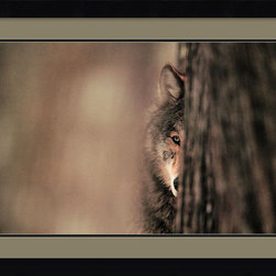 Amanti Art - Gray Wolf Framed Print by Jim Brandenburg - Cute and cunning, this shot of a gray wolf in the forest perfectly captures a sense of wild beauty. Hang this stunning custom framed print by artist Jim Brandenburg on your wall to feature this untamed allure in your decor.