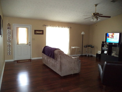 Need help with decorating my living room for Living room design help