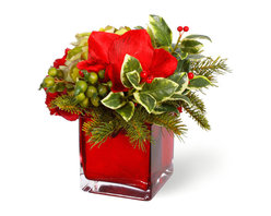 Winward Designs - Holiday Garden Amaryllis Faux Floral Arrangement - If you want an arrangement that will add festivity to your home, our holiday garden arrangements are an excellent choice. Part of our American Holiday Collection, this item features a tall, cranberry red glass vase. The red vase holds a garden of holiday greens, including pine tips and holly with red berries, as well as sage green hydrangeas and red roses. Set this arrangement in a place of prominence in your home each year and add holiday ambiance. Faux Flowers.