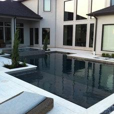 Modern Pool by Omega Pools, LLC  281-330-6771