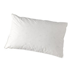 "A Little Pillow Company - ""A Little Pillow Company"" Youth Pillow - 16"" x 22"" (Hypoallergenic) - Ages: 5 - 12 years"