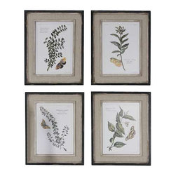 Uttermost Butterfly Plants Framed Art, S/4 - Na prints are accents by heavily distressed, black outer wooden frames with heavily textured, off-white inner lips with a heavy taupe wash. Center portion of frames are covered in a sand faux linen.