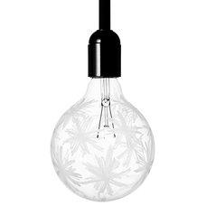 Light Bulbs by cachette