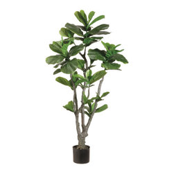 Silk Plants Direct - Silk Plants Direct Fiddle Leaf Fig Tree (Pack of 2) - Silk Plants Direct specializes in manufacturing, design and supply of the most life-like, premium quality artificial plants, trees, flowers, arrangements, topiaries and containers for home, office and commercial use. Our Fiddle Leaf Fig Tree includes the following: