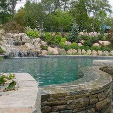 Contemporary Pool by Landscape Techniques Inc.