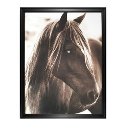Kathy Kuo Home - Hyden Rustic Lodge Modern Pensive Horse Photo Wall Art - Framed - A horse is a horse of course, but there isn't a horse quite like this one. With an intense laser-focused gaze, this equine reminds you that total and complete concentration is not only possible, it's beautiful. Custom made to order, this framed image will bring a wistful feeling to your home.