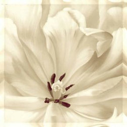 Pure White Flower Canvas prints - Pure White Flower Canvas prints online for sale. high resolution quality plus lowest rate means 100% customer satisfaction of our products of canvas prints. Just check our great service for canvas prints by click on this image you can order online and buy flower canvas prints only in $14.94! Free shipping!