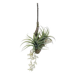 Silk Plants Direct - Silk Plants Direct Tillandsia Hanging Branch (Pack of 12) - Pack of 12. Silk Plants Direct specializes in manufacturing, design and supply of the most life-like, premium quality artificial plants, trees, flowers, arrangements, topiaries and containers for home, office and commercial use. Our Tillandsia Hanging Branch includes the following: