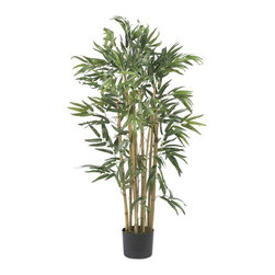 3' Multi Bambusa Bamboo Silk Tree - Need to add a touch of greenery to your sunroom but don't have the time or patience for a live tree? This healthy looking 3 foot Multi Bambusa is sure to please even the most discerning of critics. A total of five-hundred slender rich green leaves grace this all natural inspired creation. A rich mix of authentic shaded stalks immersed in a basic black planter set the stage for this elegant work of art. Height= 3 ft x Width= 21 in x Depth= 21 in