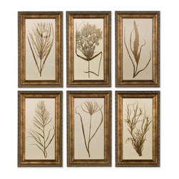 Uttermost - Uttermost Wheat Grass Framed Art Set of 6 41151 - This set of prints features wooden frames finished in bronze undertones with brown and black distressing and a gray glaze. Prints are under glass.