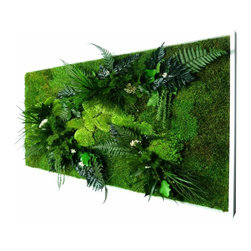 flowerboxnature - Rectangle XL Nature Frame - This Extra Large Rectangle Nature Frame will give you a different option to meet the art on your walls. The various plants used in the Nature Frames are 100% natural and biodegradable. Use various shapes and sizes to create a modern salon wall or hang a single piece to add a wall garden to any space for many years to enjoy.