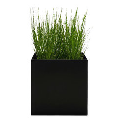 Modern Planter - Modern Cube Planter, Black, Medium - A slightly more low profile way to manage your growth rate. This unique planter is created with a smooth lip around the edge to give easy access and so you can remove overgrown plants without damaging the plant or root ball.