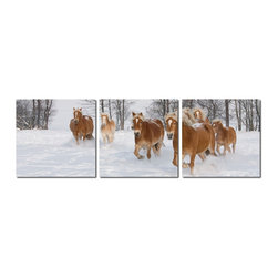 Baxton Studio - Baxton Studio Horse Herd Mounted Photography Print Triptych - An equine family takes in the sights of a winter wonderland as they trot through the snow. Enjoy the simple joy of these majestic creatures in your home or office with this 3-piece photograph set. The image is shared by three waterproof vinyl canvas sheets mounted on MDF wood frames. Made in China, fully assembled, and ready to hang in the location of your choice, only mounting hardware is needed (not included). To clean, we recommend dry dusting.